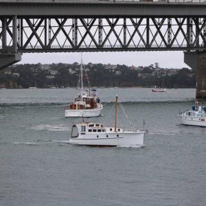 Auckland - Tauranga Race